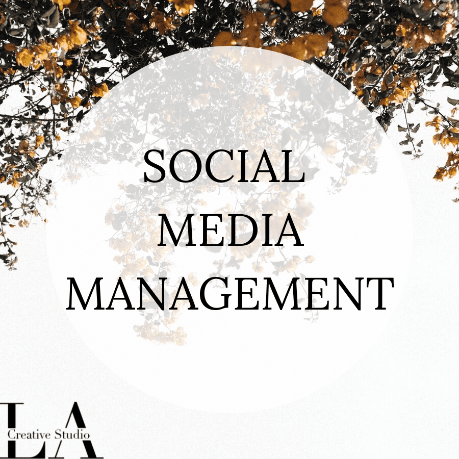 SOCIAL MEDIA MANAGEMENT ICON